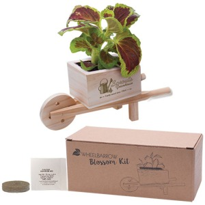 1 Seed Packet (Specify on Order), 1 Peat Pellet, Wood Wheel Barrow Planter w/Plastic Liner, and Natural Kraft Box.